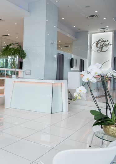 Miami Orthodontic